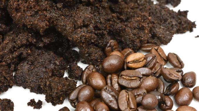 Kaffeebohnen und was danach übrig bleibt - Kaffeesatz.