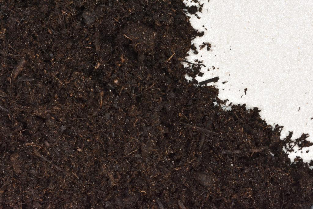 Anzuchterde (Mischung mit Sand) | Auf die richtige Mischung kommt es an: Diese Anzuchterde besteht aus nährstoffarmem Pflanzsubstrat und Sand.