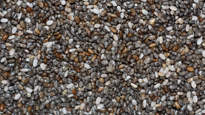 In der Nahaufnahme sind gut die verschiedenen Marmorierungen der Chiasamen zu erkennen - von beinahe weiß über bernsteinfarben bis hin zu anthrazit. Ihr Nährstoffgehalt ist nahezu identisch.
