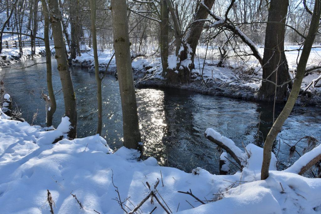 2021 - Der Winter in Bildern! (Bildergalerie 4/14)