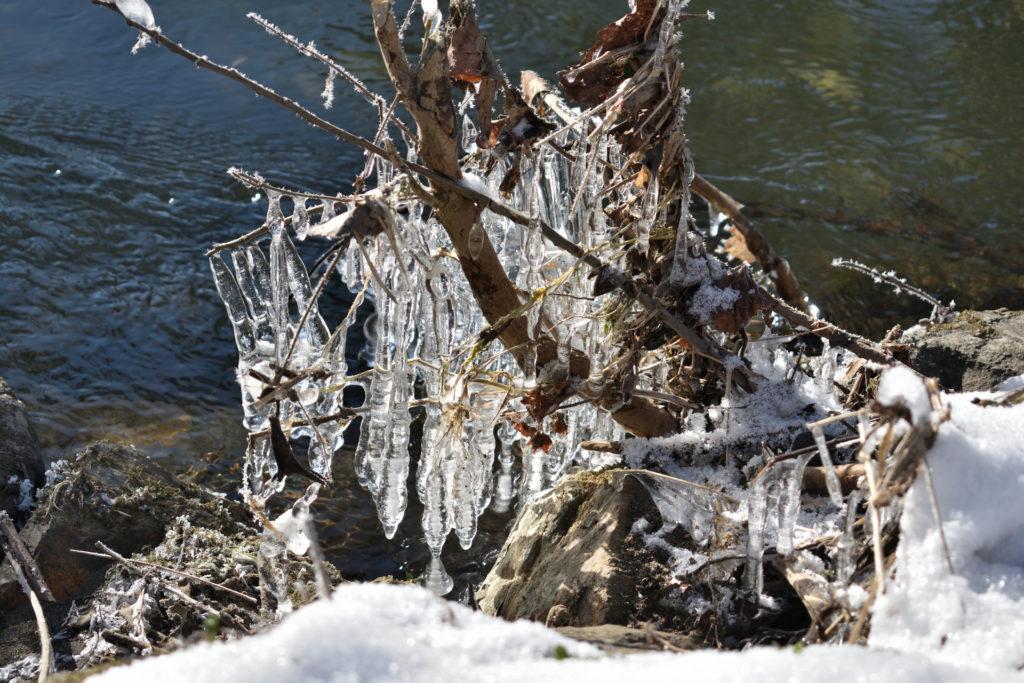 2021 - Der Winter in Bildern! (Bildergalerie 7/14)