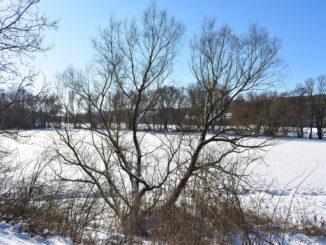 Dieses Jahr kann sich der Winter wirklich sehen lassen - Schnee und Eis so weit das Auge reicht... ☃️☃️☃️
