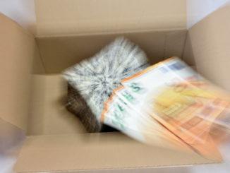 Dumm gelaufen... hier haben Kriminelle wieder einmal richtig abgezockt: Betrügereien mit Vorkasse-Zahlungen kosten jedes Jahr vielen gutgläubigen Internet-Nutzern eine Menge Geld und Ärger.